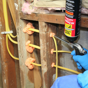 Electrical Penetrations Web Image